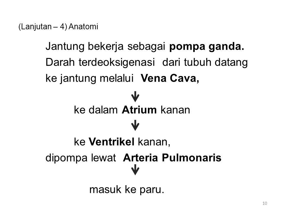 (Lanjutan – 4) Anatomi Jantung bekerja sebagai pompa ganda.