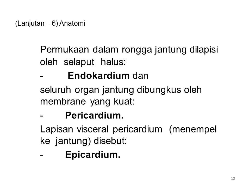 (Lanjutan – 6) Anatomi Permukaan dalam rongga jantung dilapisi oleh selaput halus: - Endokardium dan seluruh organ jantung dibungkus oleh membrane yang kuat: -Pericardium.