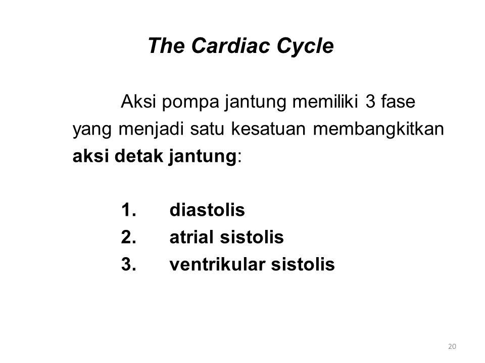 The Cardiac Cycle Aksi pompa jantung memiliki 3 fase yang menjadi satu kesatuan membangkitkan aksi detak jantung: 1.diastolis 2.atrial sistolis 3.ventrikular sistolis 20