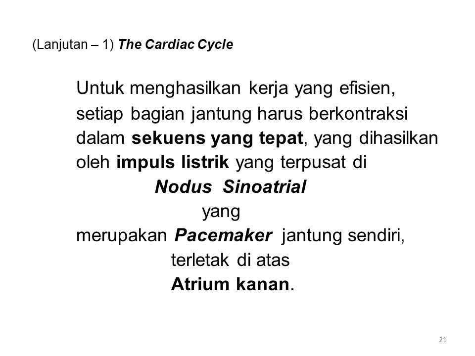 (Lanjutan – 1) The Cardiac Cycle Untuk menghasilkan kerja yang efisien, setiap bagian jantung harus berkontraksi dalam sekuens yang tepat, yang dihasilkan oleh impuls listrik yang terpusat di Nodus Sinoatrial yang merupakan Pacemaker jantung sendiri, terletak di atas Atrium kanan.