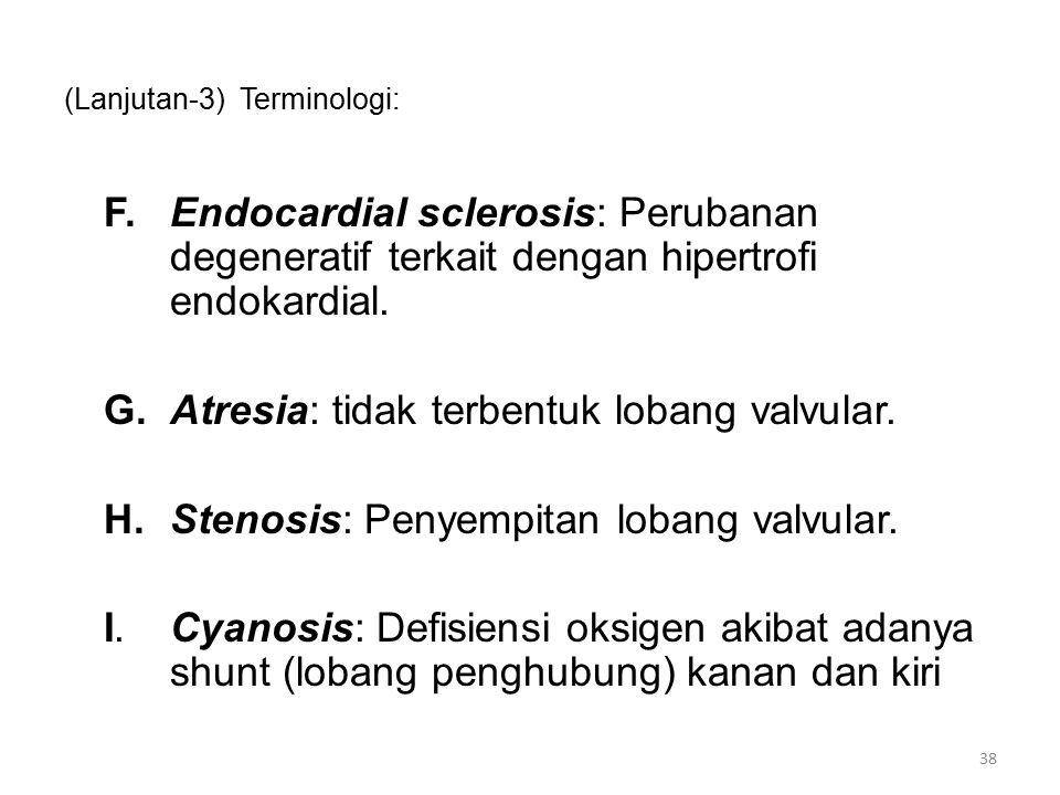 (Lanjutan-3) Terminologi: F.Endocardial sclerosis: Perubanan degeneratif terkait dengan hipertrofi endokardial.
