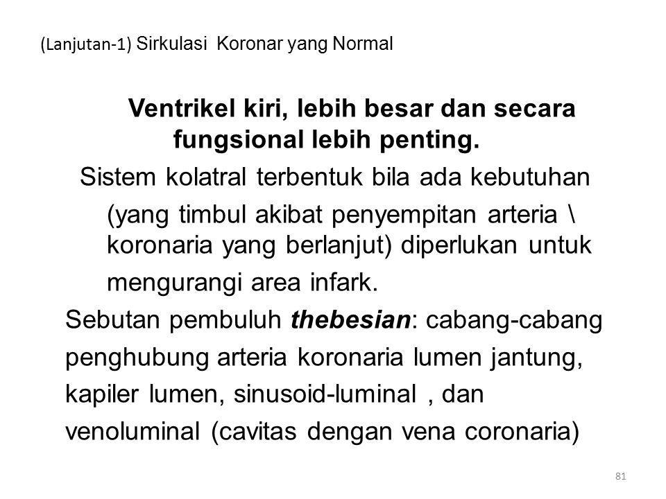 (Lanjutan-1) Sirkulasi Koronar yang Normal Ventrikel kiri, lebih besar dan secara fungsional lebih penting.