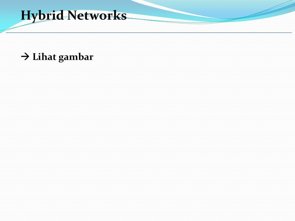 Hybrid Networks  Lihat gambar