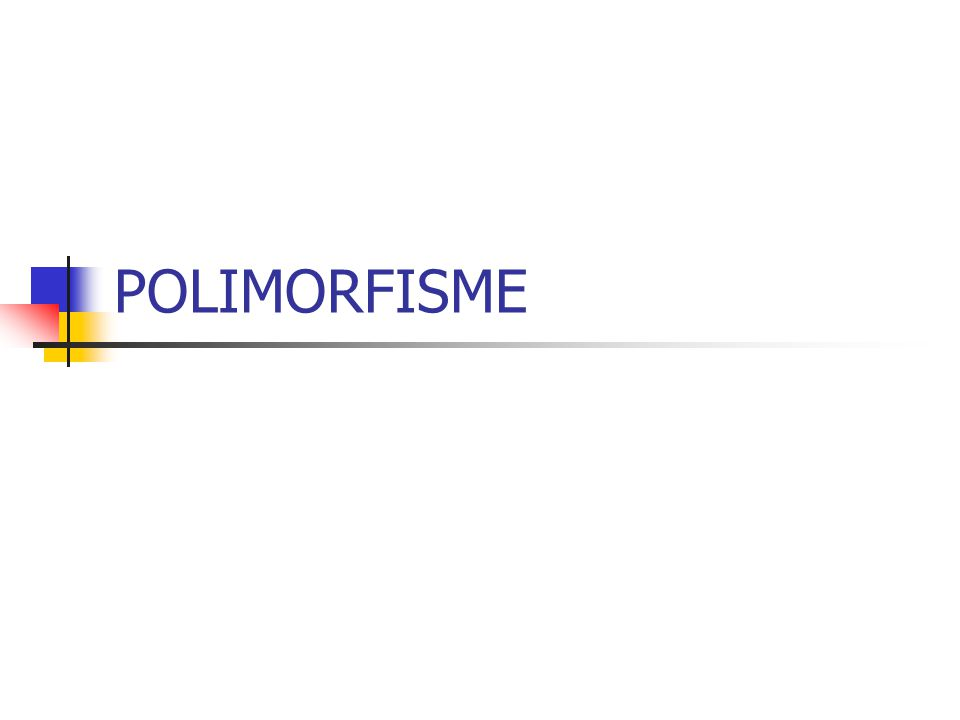 POLIMORFISME