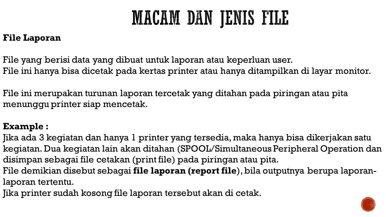 File Laporan File yang berisi data yang dibuat untuk laporan atau keperluan user. File ini hanya bisa dicetak pada kertas printer atau hanya ditampilk