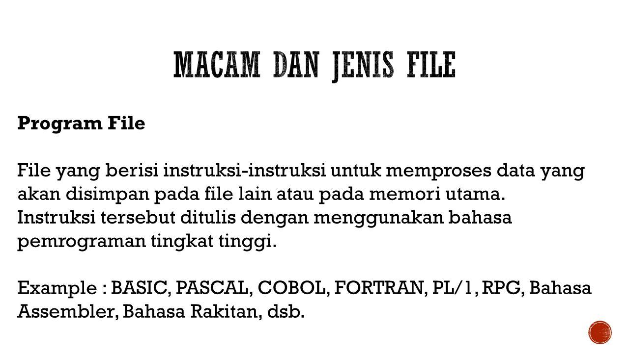Program File File yang berisi instruksi-instruksi untuk memproses data yang akan disimpan pada file lain atau pada memori utama. Instruksi tersebut di