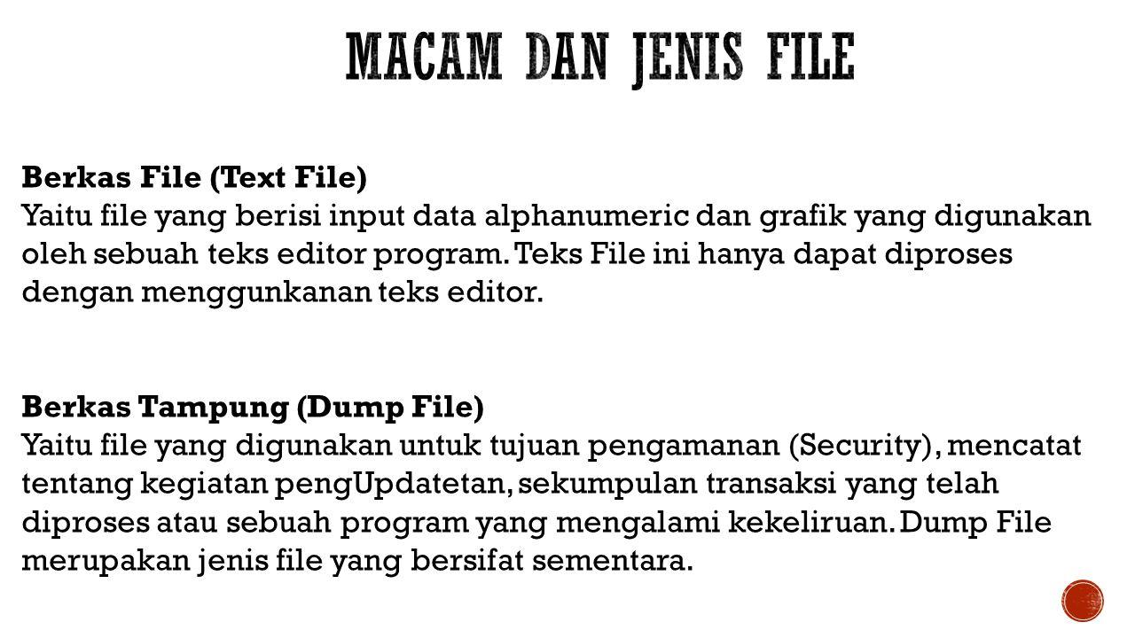 Berkas File (Text File) Yaitu file yang berisi input data alphanumeric dan grafik yang digunakan oleh sebuah teks editor program. Teks File ini hanya