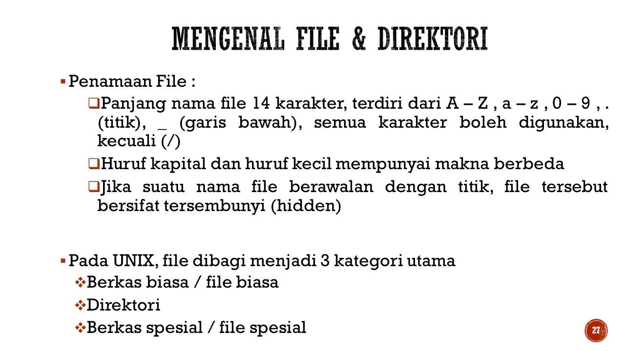  Penamaan File :  Panjang nama file 14 karakter, terdiri dari A – Z, a – z, 0 – 9,. (titik), _ (garis bawah), semua karakter boleh digunakan, kecual