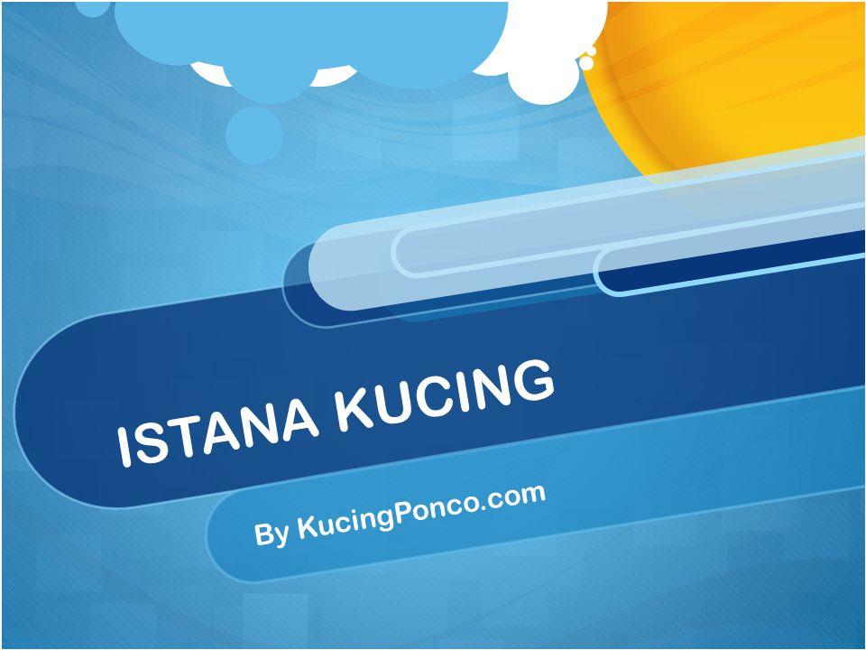 ISTANA KUCING By KucingPonco.com
