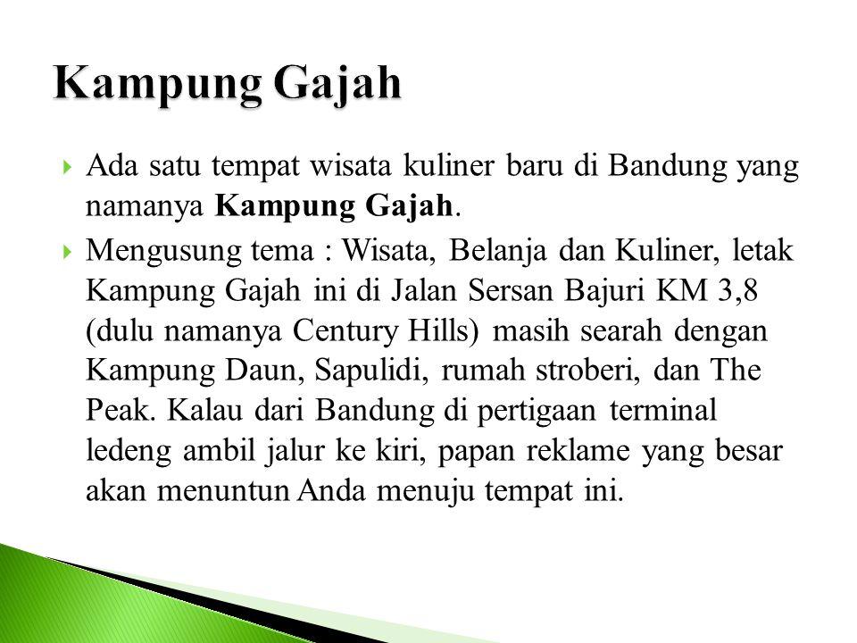  Ada satu tempat wisata kuliner baru di Bandung yang namanya Kampung Gajah.  Mengusung tema : Wisata, Belanja dan Kuliner, letak Kampung Gajah ini d