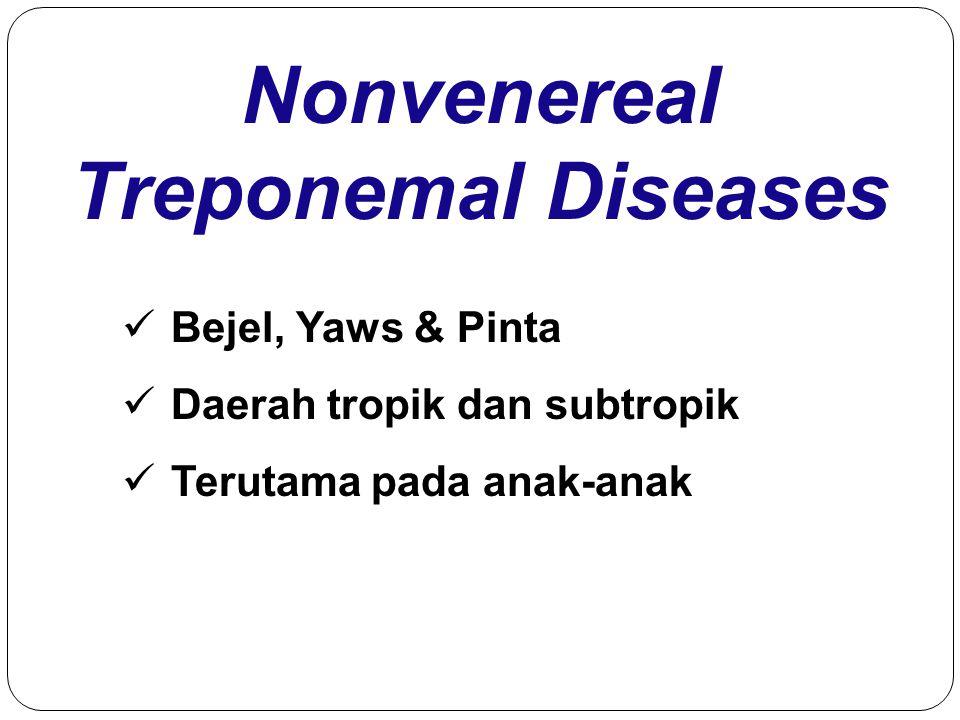 Nonvenereal Treponemal Diseases Bejel, Yaws & Pinta Daerah tropik dan subtropik Terutama pada anak-anak