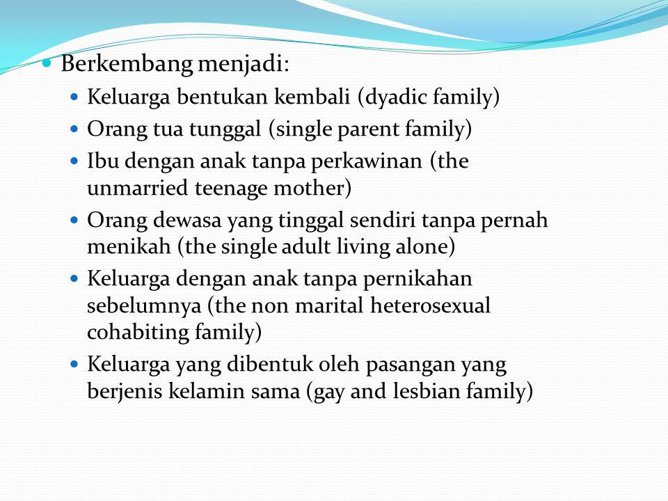 Berkembang menjadi: Keluarga bentukan kembali (dyadic family) Orang tua tunggal (single parent family) Ibu dengan anak tanpa perkawinan (the unmarried