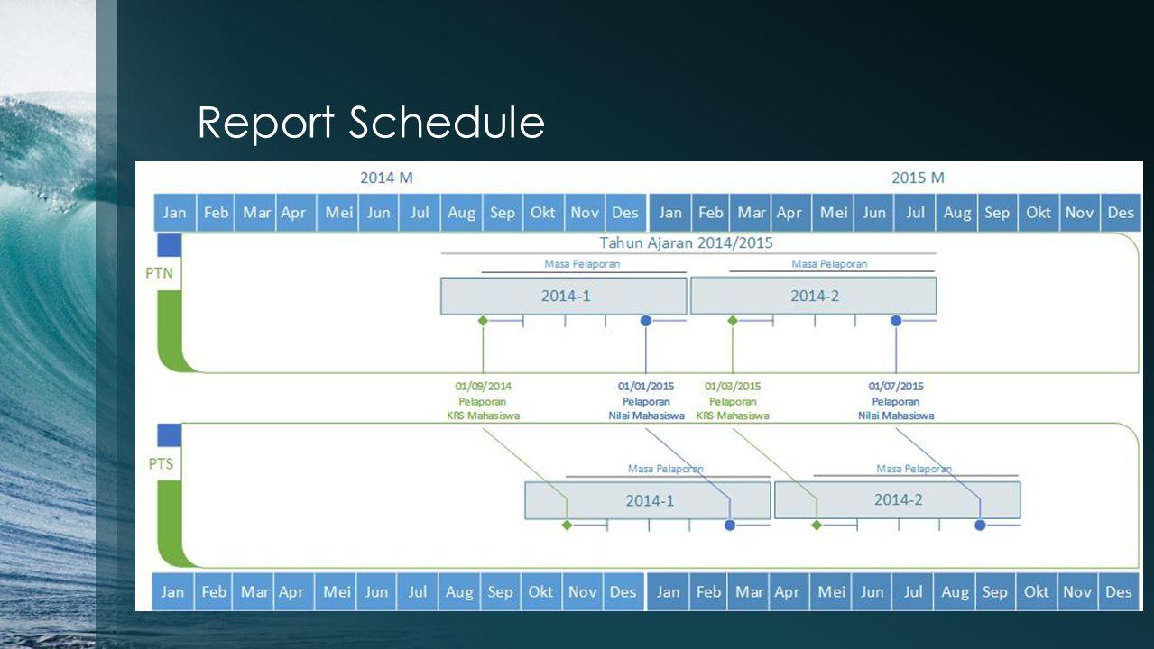 Report Schedule