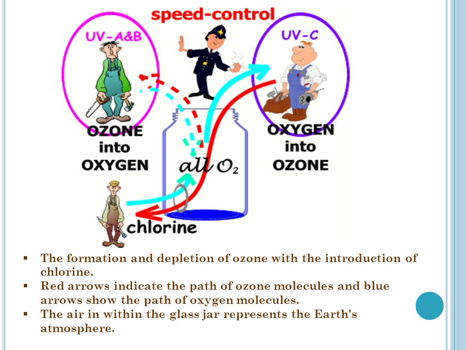  The formation and depletion of ozone with the introduction of chlorine.