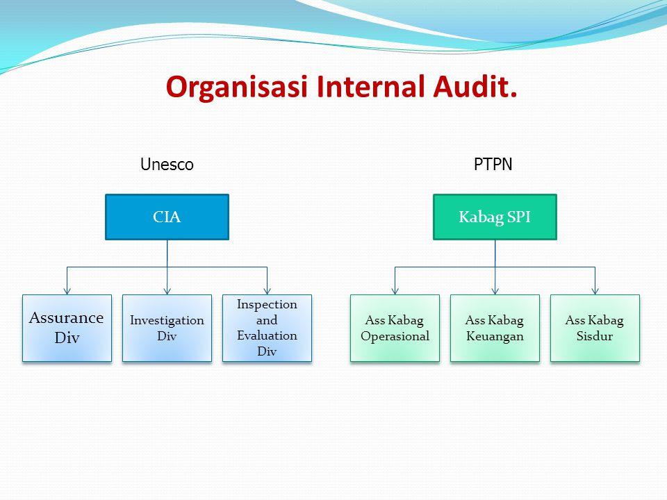 Organisasi Internal Audit. CIA Assurance Div Assurance Div Investigation Div Investigation Div Inspection and Evaluation Div Kabag SPI Ass Kabag Opera