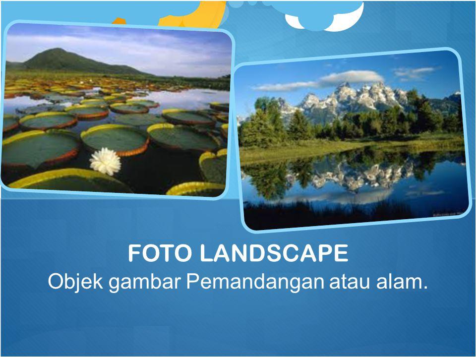 Objek gambar Pemandangan atau alam. FOTO LANDSCAPE