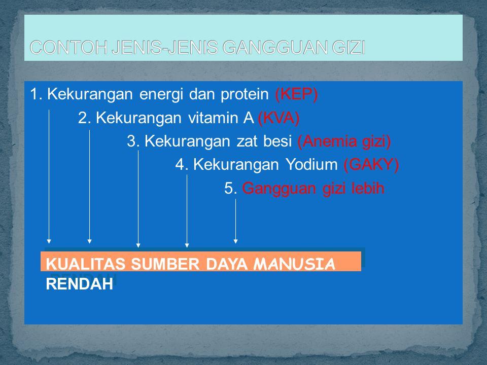1. Kekurangan energi dan protein (KEP) 2. Kekurangan vitamin A (KVA) 3. Kekurangan zat besi (Anemia gizi) 4. Kekurangan Yodium (GAKY) 5. Gangguan gizi