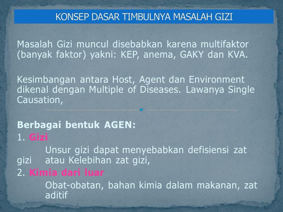 Masalah Gizi muncul disebabkan karena multifaktor (banyak faktor) yakni: KEP, anema, GAKY dan KVA. Kesimbangan antara Host, Agent dan Environment dike