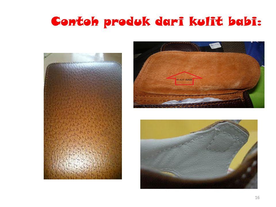 Contoh produk dari kulit babi: 16