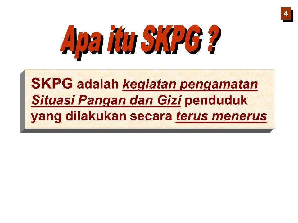 SKPG adalah kegiatan pengamatan Situasi Pangan dan Gizi penduduk yang dilakukan secara terus menerus 4 4