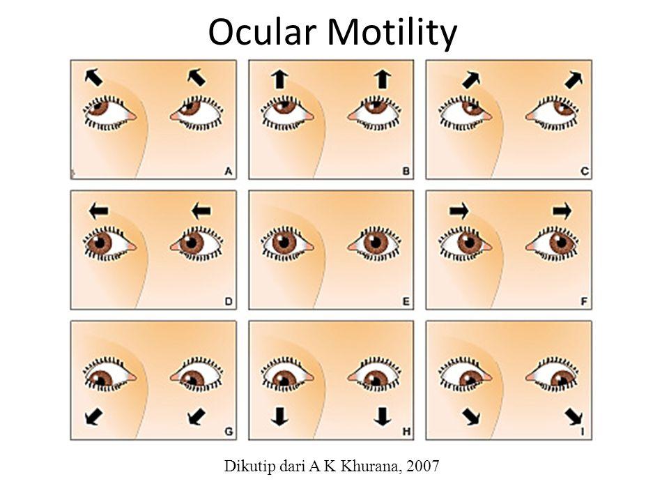 Ocular Motility Dikutip dari A K Khurana, 2007