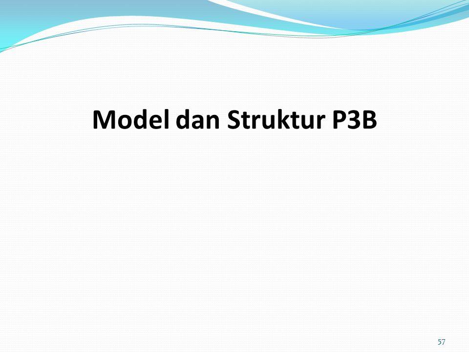 Model dan Struktur P3B 57