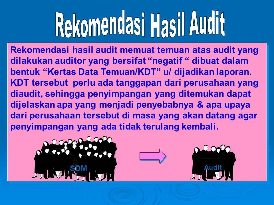 """Rekomendasi hasil audit memuat temuan atas audit yang dilakukan auditor yang bersifat """"negatif """" dibuat dalam bentuk """"Kertas Data Temuan/KDT"""" u/ dijad"""