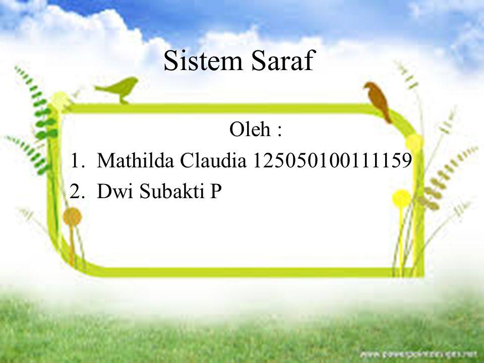 Sistem Saraf Oleh : 1.Mathilda Claudia 125050100111159 2.Dwi Subakti P