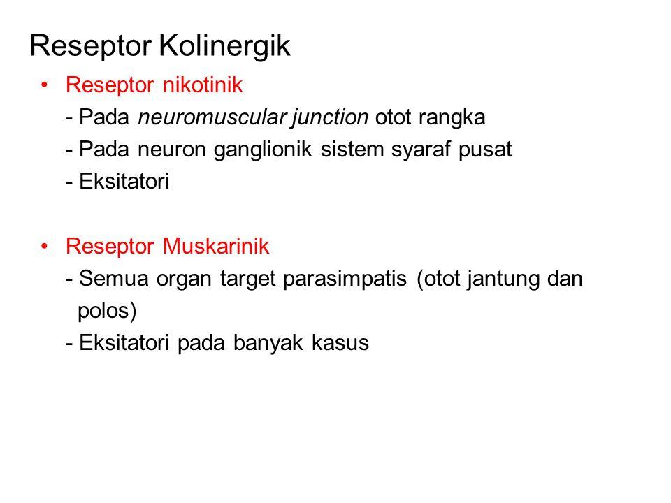 Reseptor Kolinergik Reseptor nikotinik - Pada neuromuscular junction otot rangka - Pada neuron ganglionik sistem syaraf pusat - Eksitatori Reseptor Muskarinik - Semua organ target parasimpatis (otot jantung dan polos) - Eksitatori pada banyak kasus