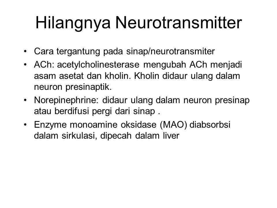 Hilangnya Neurotransmitter Cara tergantung pada sinap/neurotransmiter ACh: acetylcholinesterase mengubah ACh menjadi asam asetat dan kholin.