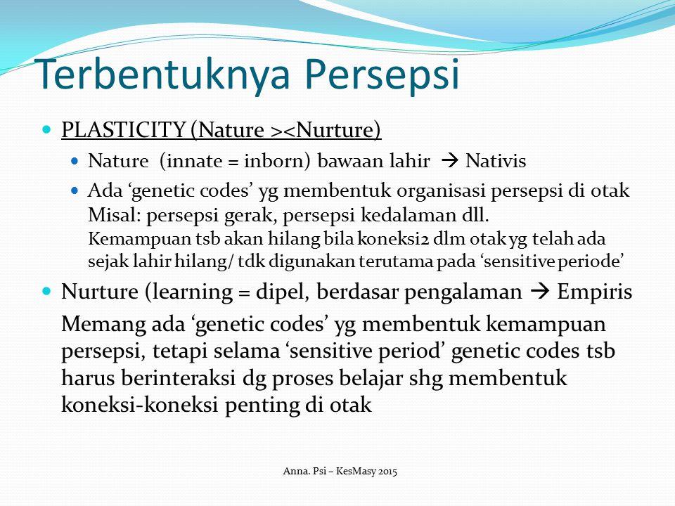 Terbentuknya Persepsi PLASTICITY (Nature ><Nurture) Nature (innate = inborn) bawaan lahir  Nativis Ada 'genetic codes' yg membentuk organisasi persep
