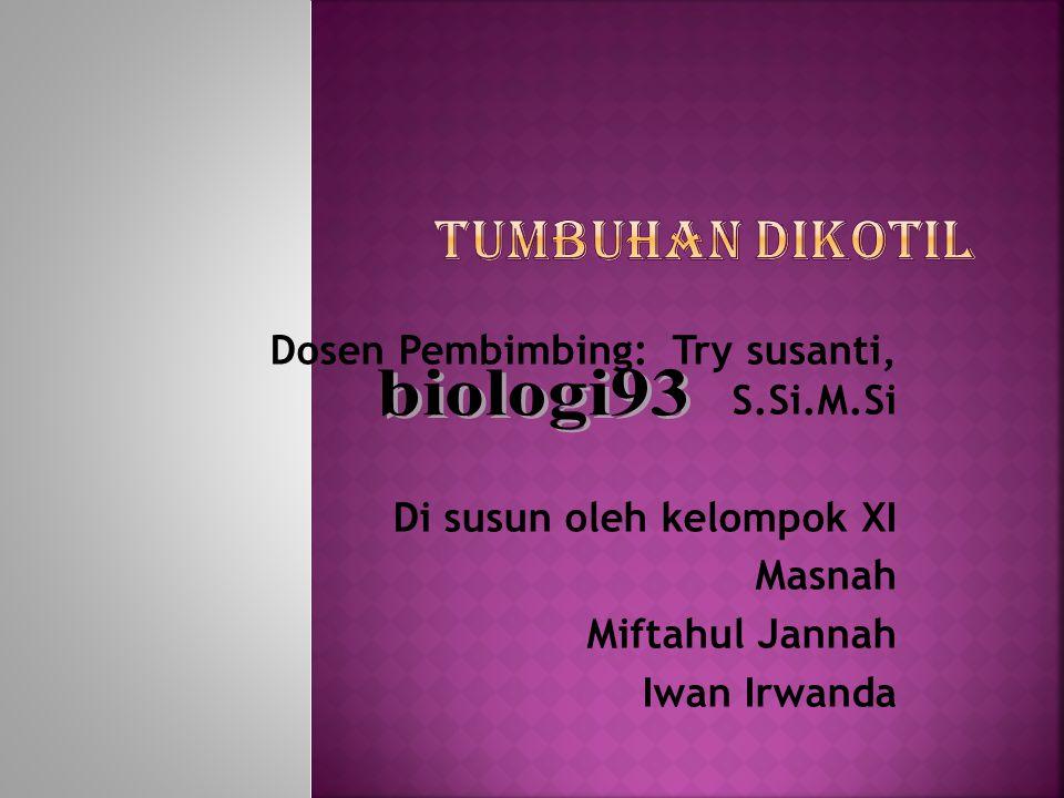 Dosen Pembimbing: Try susanti, S.Si.M.Si Di susun oleh kelompok XI Masnah Miftahul Jannah Iwan Irwanda