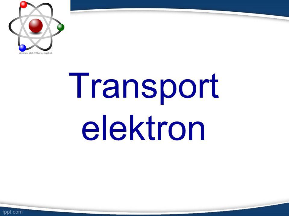 overview Rantai transpor elektron merupakan serangkaian reaksi oksidasi reduksi (redoks), masing-masing melibatkan oksidasi dari satu molekul (donor elektron) disertai dengan reduksi dari molekul lain (akseptor elektron).