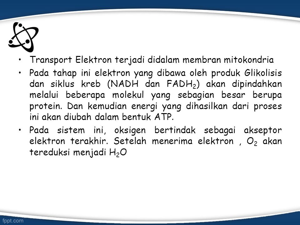 Berikut reaksinya: Pembawa elektron dalam transpor elektron antara lain protein FMN, besisulfur (FeS) dan sitokrom.