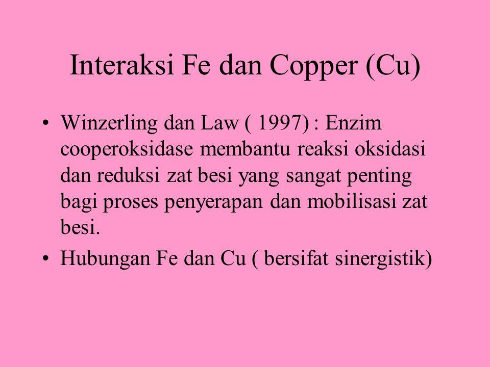 Interaksi Fe dan Copper (Cu) Winzerling dan Law ( 1997) : Enzim cooperoksidase membantu reaksi oksidasi dan reduksi zat besi yang sangat penting bagi proses penyerapan dan mobilisasi zat besi.