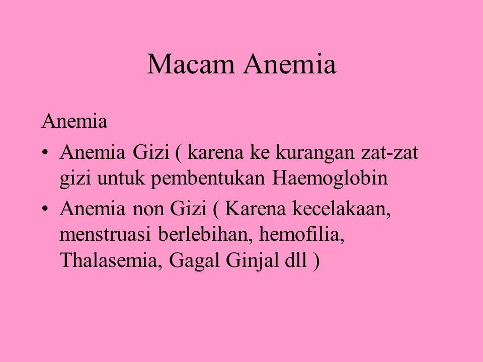 Macam Anemia Anemia Anemia Gizi ( karena ke kurangan zat-zat gizi untuk pembentukan Haemoglobin Anemia non Gizi ( Karena kecelakaan, menstruasi berlebihan, hemofilia, Thalasemia, Gagal Ginjal dll )