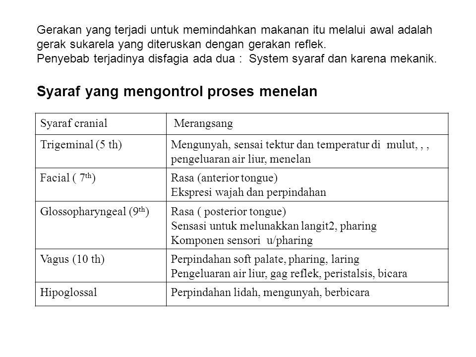 Syaraf cranial Merangsang Trigeminal (5 th)Mengunyah, sensai tektur dan temperatur di mulut,,, pengeluaran air liur, menelan Facial ( 7 th )Rasa (ante