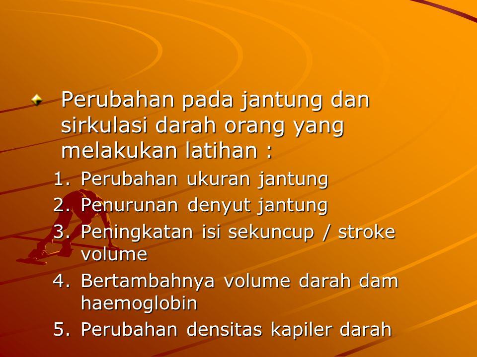 Perubahan pada jantung dan sirkulasi darah orang yang melakukan latihan : 1.Perubahan ukuran jantung 2.Penurunan denyut jantung 3.Peningkatan isi sekuncup / stroke volume 4.Bertambahnya volume darah dam haemoglobin 5.Perubahan densitas kapiler darah