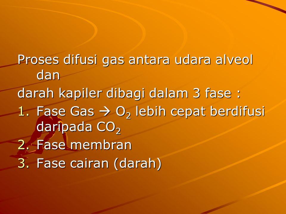 Proses difusi gas antara udara alveol dan darah kapiler dibagi dalam 3 fase : 1.Fase Gas  O 2 lebih cepat berdifusi daripada CO 2 2.Fase membran 3.Fase cairan (darah)