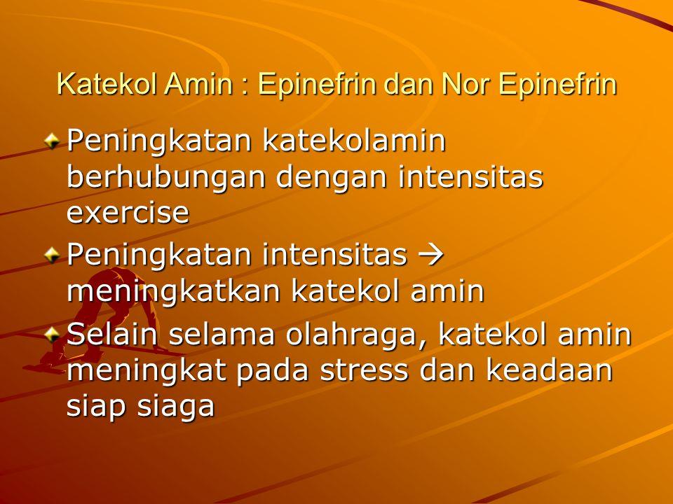 Katekol Amin : Epinefrin dan Nor Epinefrin Peningkatan katekolamin berhubungan dengan intensitas exercise Peningkatan intensitas  meningkatkan katekol amin Selain selama olahraga, katekol amin meningkat pada stress dan keadaan siap siaga