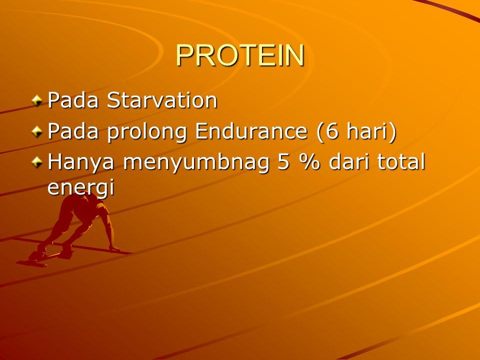 PROTEIN Pada Starvation Pada prolong Endurance (6 hari) Hanya menyumbnag 5 % dari total energi