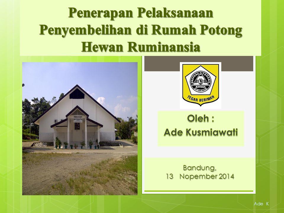 Bandung, 13 Nopember 2014 Ade K