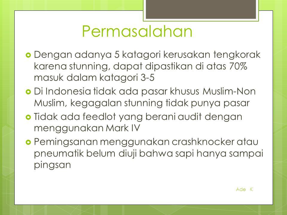 Permasalahan  Dengan adanya 5 katagori kerusakan tengkorak karena stunning, dapat dipastikan di atas 70% masuk dalam katagori 3-5  Di Indonesia tida