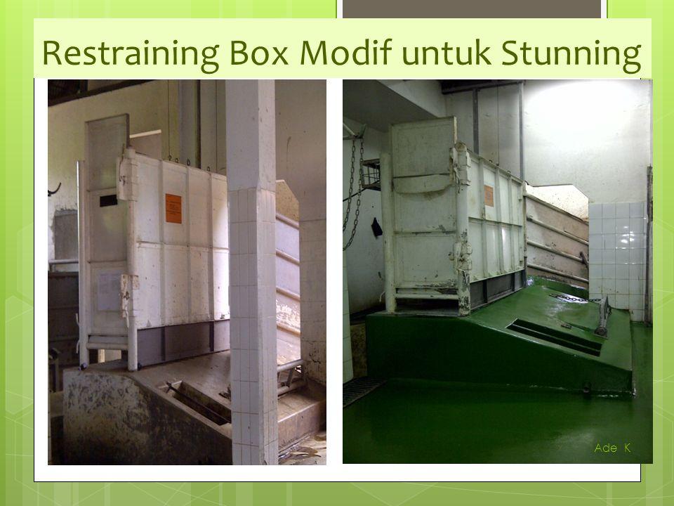 Herlien K Restraining Box Modif untuk Stunning Ade K