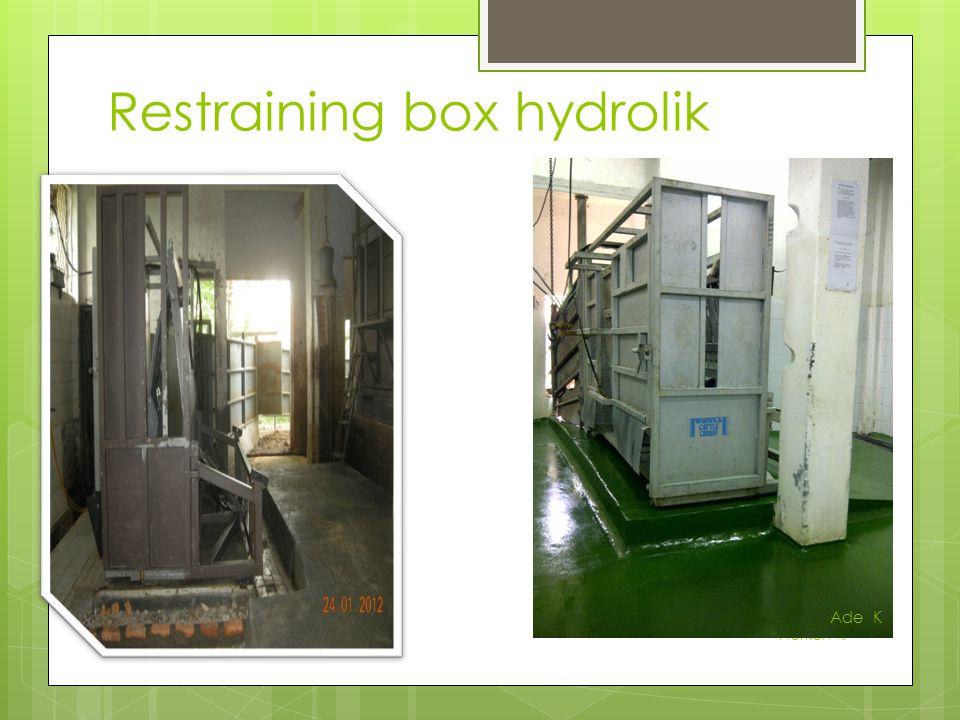 Restraining box hydrolik Herlien K Ade K