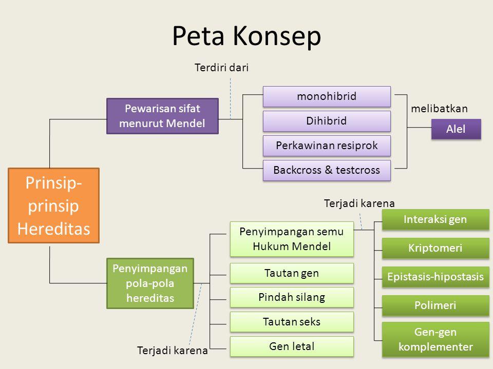 Peta Konsep Prinsip- prinsip Hereditas Pewarisan sifat menurut Mendel Penyimpangan pola-pola hereditas monohibrid Backcross & testcross Perkawinan res