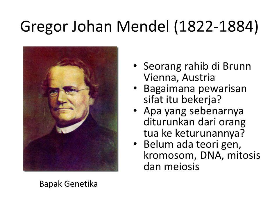 Gregor Johan Mendel (1822-1884) Seorang rahib di Brunn Vienna, Austria Bagaimana pewarisan sifat itu bekerja? Apa yang sebenarnya diturunkan dari oran