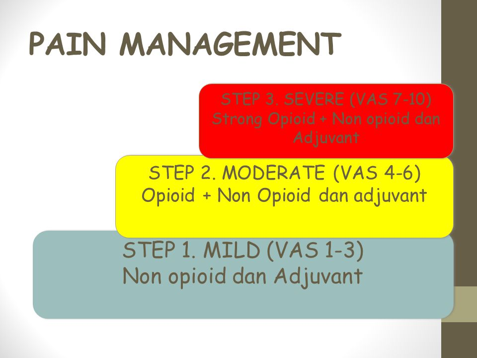 PAIN MANAGEMENT STEP 1.MILD (VAS 1-3) Non opioid dan Adjuvant STEP 1.