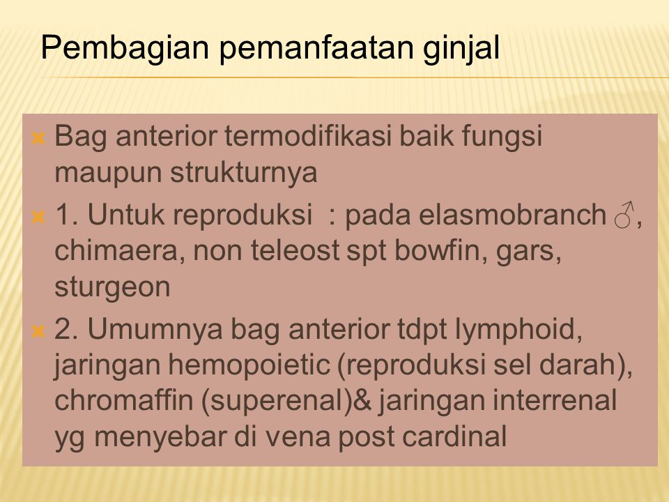  Cairan yang dikeluarkan dalam urin ikan : - creatin - creatinin - trimethylamine