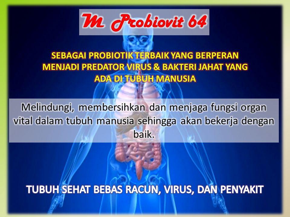 -DIABETES -GINJAL -JANTUNG -LIVER/HEPATITIS -STROKE -HIPERTENSI -KANKER -TUMOR -KISTA -MIOM -GANGGUAN PENCERNAAN -TYPUS -ASAM URAT DAN REUMATIK -KOLESTEROL -ALERGI -OBESITAS -AMBEIEN -KEPUTIHAN -DANLAIN-LAIN MANFAAT PROBIOVIT 64: MENJAGA KESEHATAN DAN SOLUSI PENYEMBUHAN BERBAGAI MACAM PENYAKIT KONSUMSI RUTIN 2 SLOKI TIAP HARI SEBELUM TIDUR DAN PAGI SEBELUM MAKAN